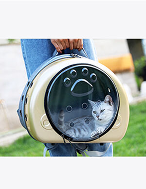 Backpack Golden 35*28*33cm -  Dogs product
