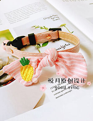 Collar  Pink/Pineapple Free Size