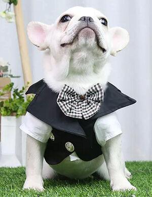 Tuxedo Suit Black & White Large