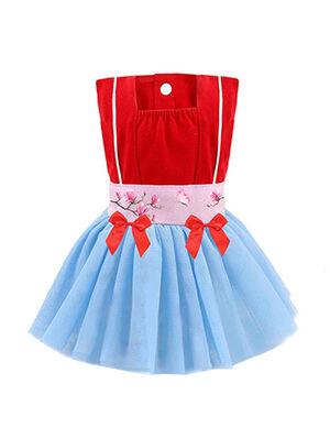 Princess Dress Red & Blue Small