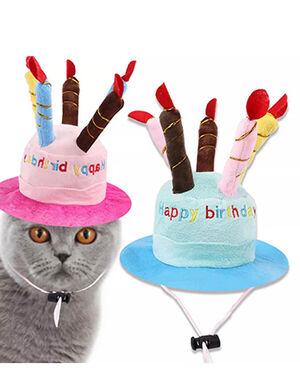 Birthday Cake Hat Pink