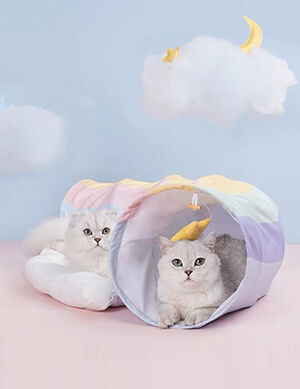 Exclusive Tunnel Bed Rainbow Large -  Dogs product