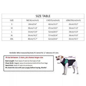 White Burberry Bear Shirts Medium -  Dogs product