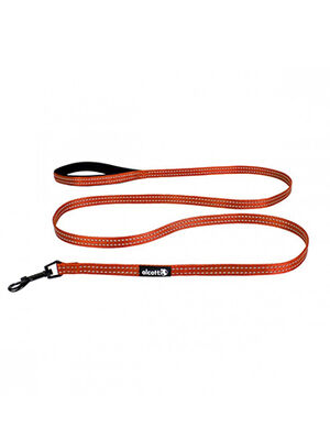 Alcott Visibility Lead Orange Small