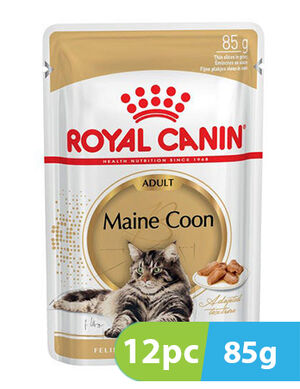 Royal Canin Maine Coon Adult 12pc x 85g