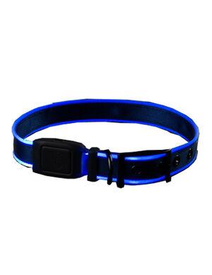Niteize Nite Dog Rechargeable LED Collar Blue Large