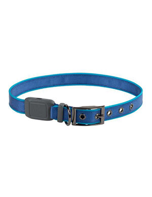 Niteize Nite Dog Rechargeable LED Collar Blue Small