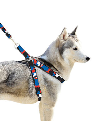 Pet Craft Camouflage Leash & Harness Blue Small