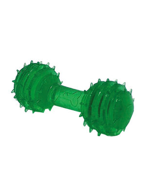 Pet Craft Teeth Massage Chewing Toy Green