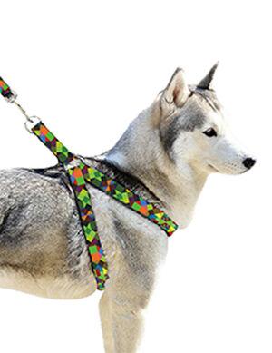 Pet Craft Neon Leash & Harness Large