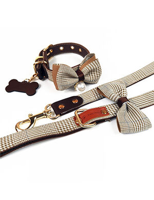 Brown Stripped Bow Collar & Leash Set Large