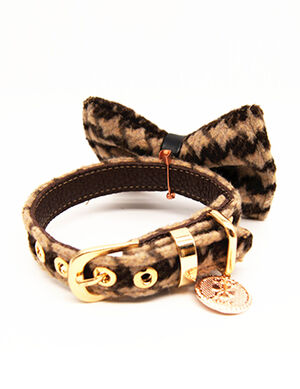 Brown Stripped Bow Collar & Leash Set Medium